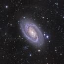 M81 L(RHA)GB with IFN,                                Martin Dufour