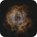 Rosette Nebula w/STC Duo Narrowband  Bortle 9,                                Jeff Dorman