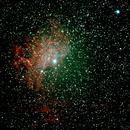 Flaming Star Nebula,                                Robin Clark - EAA imager