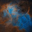 Sh 2-132 Lion Nebula,                                Tim Hutchison