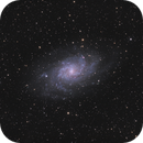M33,                                Mark Minor