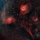 Flaming Star Nebula Region,                                Roland Roberts