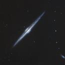 NGC 4565,  galaxie spirale dans la constellation de la Chevelure de Bérénice,                                Roger Bertuli