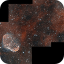 NGC6888 & PN G75.5+1.7,                                Samuel