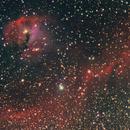 """IC 2177 (""""Seagull"""") nebula,                                Nikola Nikolov"""