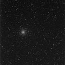 M56 globular cluster, survey image,                                erdmanpe
