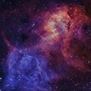 Sh2-132 Lion Nebula Bi-color,                                John Travis