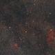 Cepheus & IC 1396 Widefield,                                ThomasR