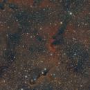 Elephant's Trunk Nebula,                                nazarine