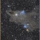 Sharknebula's head, VDB 149, VDB 150,                                Aarni Vuori