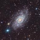 NGC2403 LRGB,                                Mike Matthews