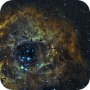 NGC 2237 - Rosette Nebula,                                Frank Breslawski