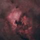Starless North America,                                Jeff Tomasi