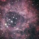 The Rosette Nebula(NGC 2237-9、NGC 2246),                                Ken Yoshimura