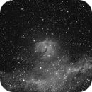 IC 2177 the Seagull Nebula in HAlpha,                                RonAdams