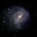 M83 Galaxy,                                Celso Cardoso