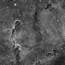 IC 1396,                                Jose Borrero