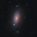 M63 galaxy,                                Rolandas_S
