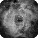 Rosette Nebula in Ha,                                Rob Farmiloe