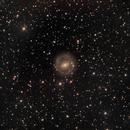 NGC 2217 in CMa,                                Andrew Lockwood