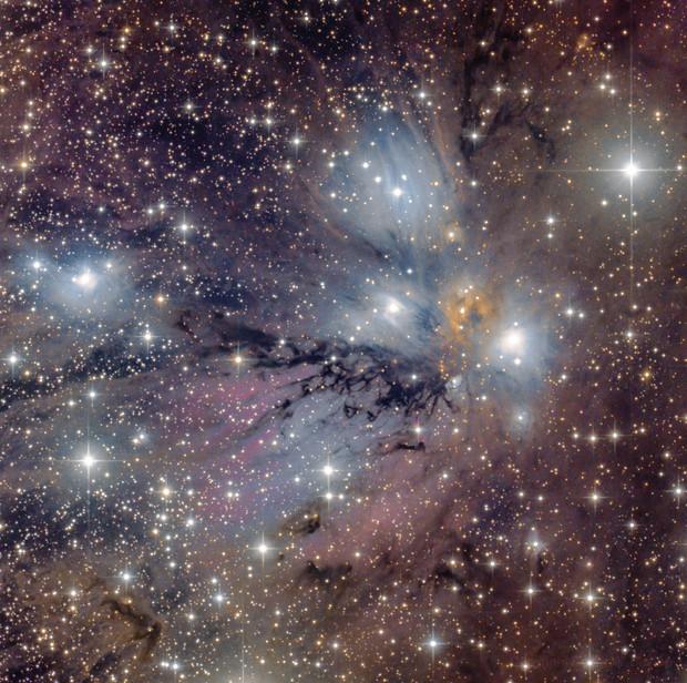 NGC 2170 - The Angel Nebula,                                Scotty Bishop