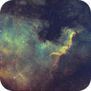 NGC 7000 North America Nebula in SHO,                                Graham Roberts