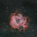 Rosette Nebula (NGC 2244),                                Mario Spenard
