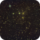 Coma Cluster,                                Tom Robbe