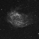 Sh2-261 (Lower Nebula),                                FrancescoNavarra