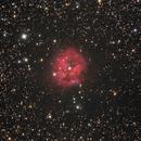 IC5146 - Cocoon Nebula,                                Ivaldo Cervini