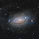 M 63, the Sunflower Galaxy,                                Steve Cooper