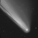 Comet Neowise - C/2020 F3,                                Marcel Drechsler