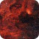 Sh2-101 Sharpless 101 The Tulip Nebula,                                Tim Ray