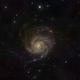 M101,                                John Poultney