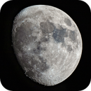 Bright waxing moon,                                Shannon Calvert