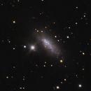 NGC1569,                                lowenthalm