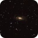 NGC 5033-The Waterbug galaxy,                                gibran85
