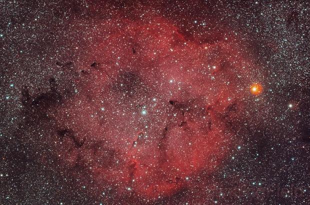IC1396,                                Feichen
