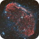 The Crescent Nebula (NGC 6888) in bicolor,                                Thomas Wahl