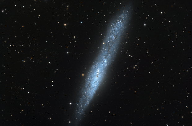 NGC 55 - Whale Galaxy,                                Dhaval Brahmbhatt