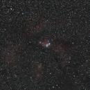 Cone Nebula Region Wide Field,                                mikebrous