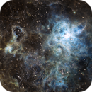 NGC2070 Tarantula Nebula,                                Shane Gilbert