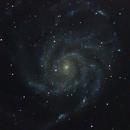 Pinwheel Galaxy (M101),                                ChristopherL