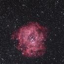 NGC 2244  the Rosette Nebula,                                RonAdams