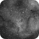 IC1396 - NEBULEUSE DE LA TROMPE D'ELEPHANT,                                François Bouttin