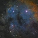 NGC 7822 SHO,                                lucky_s