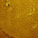 Sun H-alpha AR2420/21/22/23/24/25,                                Stephan Reinhold