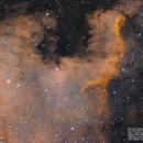 Sh2-117 ou NGC 7000,                                João Gabriel Fonseca Porto