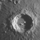 Copernicus,                                urmymuse
