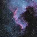 Cygnus Wall,                                Ron Hunt